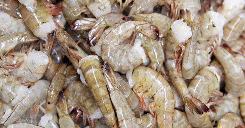Shrimp (Wild Caught)