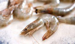 Vannemie Shrimp (Farmed)