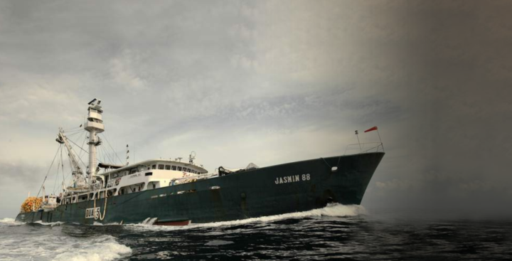 MSC: Intervening in PNA tuna re-assessment would go against 'impartiality' as standard setter